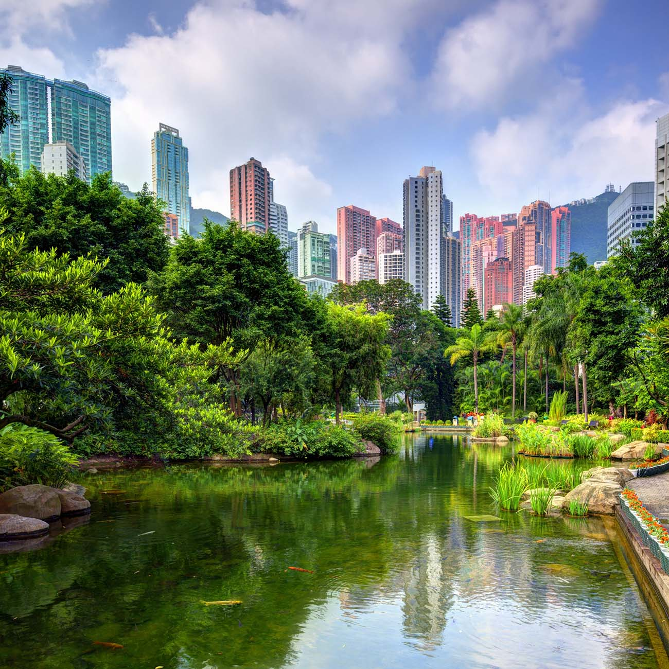 Pond and landscape of Hong Kong Park